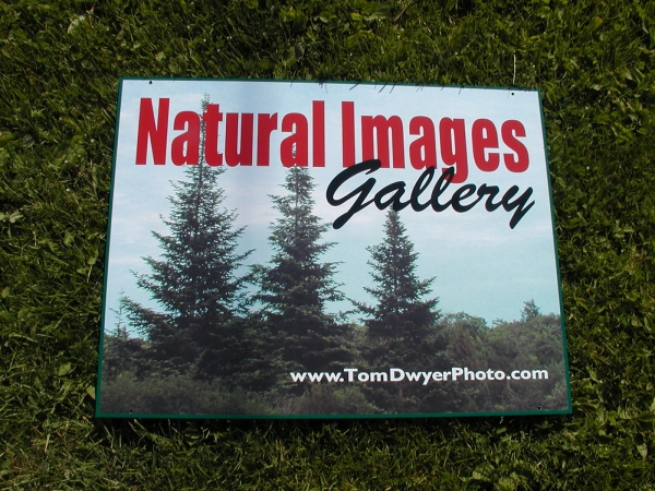 Natural Images Gallery ::  ::